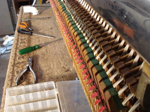 24 Rails & bridle tapes installed in action