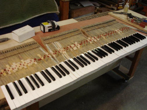 8 - New keytops shaped to the kys. Ready for installation in the piano